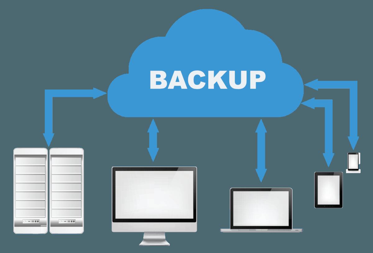 best wordpress theme - backup